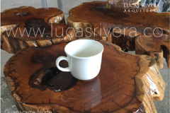 LucasRivera.coS-14
